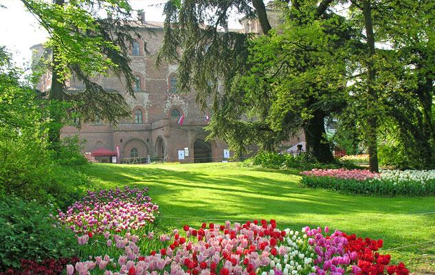 castello-pralormo-tulipani